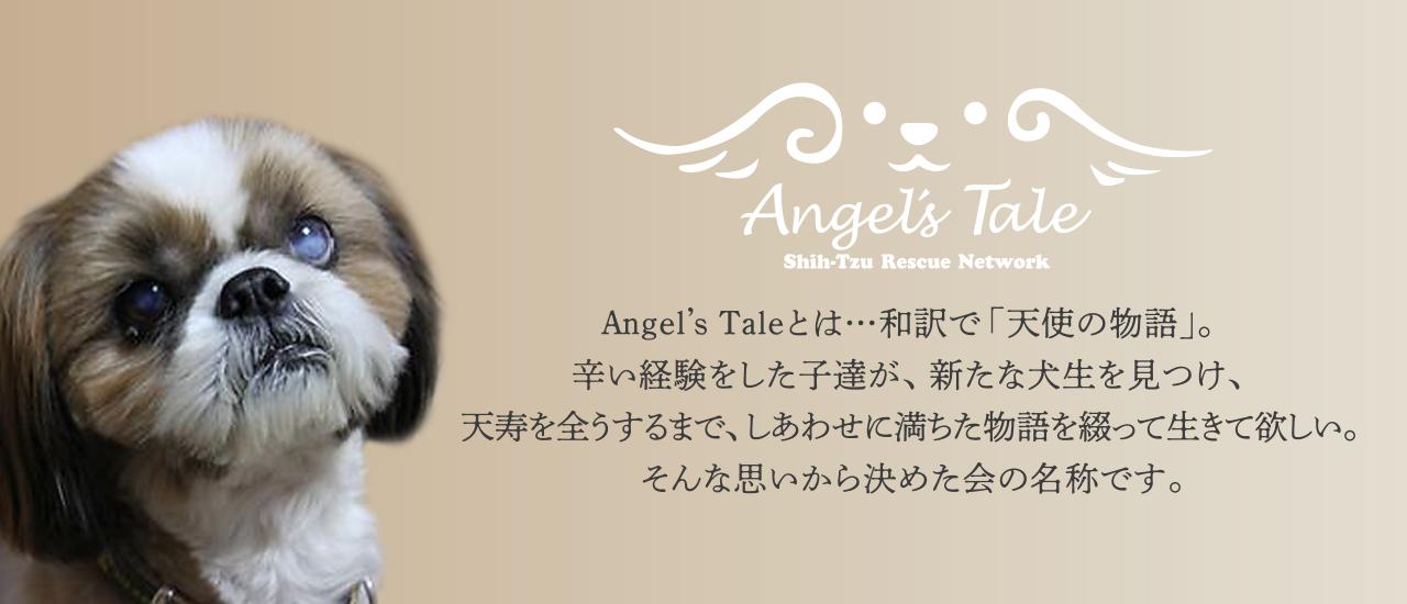 Angel's Taleとは